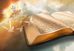 Lição 11 A sabedoria do tempo de Deus