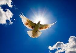 A obra do Espírito Santo em nós