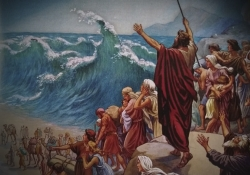 Lição 11 - Deus liberta Seu povo