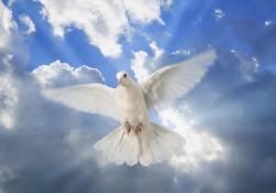 Maior luz sobre o Espírito Santo