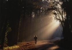 Perigos no trabalho pastoral