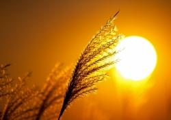 Meditação de por do sol - Respeito para com meu esposo