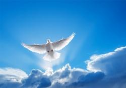 Lição 2 - Símbolos do Espírito Santo