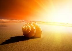 Meditação de por do sol - Regozijo na simplicidade da natureza