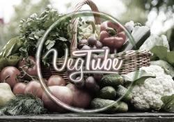 Curso de Culinária VegTube